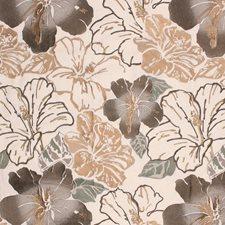 Café Au Lait Decorator Fabric by RM Coco