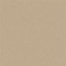 Beige Faux Leather Decorator Fabric by Kravet