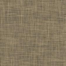 Ashen Decorator Fabric by Kasmir