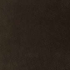 Brown/Beige Solid Decorator Fabric by Kravet