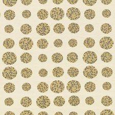 Coin Decorator Fabric by Kasmir