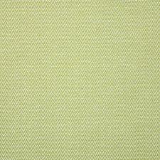 Kiwi Decorator Fabric by Pindler