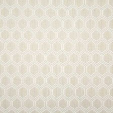 Parchment Contemporary Decorator Fabric by Pindler