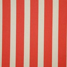 Papaya Stripe Decorator Fabric by Pindler