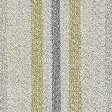 Cactus Decorator Fabric by Highland Court