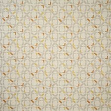 Butternut Contemporary Decorator Fabric by Pindler