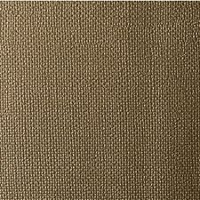 Gold Rush Solids Decorator Fabric by Kravet