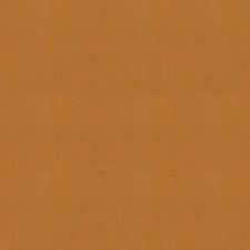 Caramel Texture Decorator Fabric by Kravet