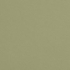 Fern Solids Decorator Fabric by Kravet