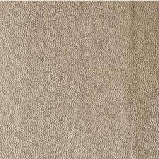 Mica Metallic Decorator Fabric by Kravet