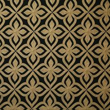 Onyx Decorator Fabric by Pindler