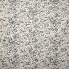 Haze Traditional Decorator Fabric by Pindler