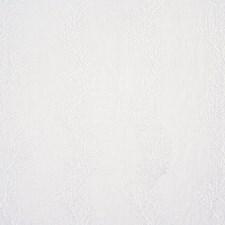 Opal Decorator Fabric by Ralph Lauren