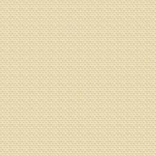 Sand C/O Decorator Fabric by Ralph Lauren