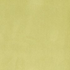Honeydew Decorator Fabric by Silver State
