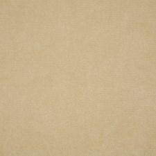 Raffia Solid Decorator Fabric by Pindler