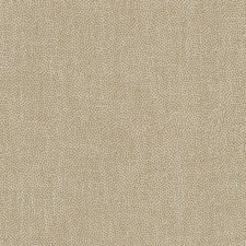 Beige/Gold Metallic Decorator Fabric by Kravet