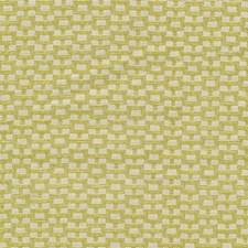 Endive Decorator Fabric by Kasmir
