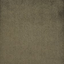 Bear Cub Decorator Fabric by Maxwell