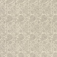 Neutral/Grey Botanical Decorator Fabric by Kravet