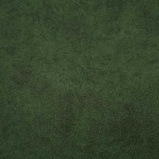 Jungle Solid Decorator Fabric by Pindler