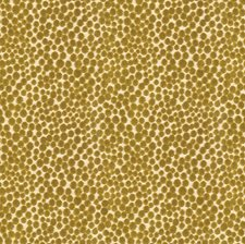 Lime Dots Decorator Fabric by Baker Lifestyle