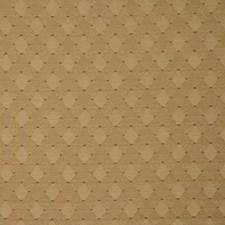Coriand Decorator Fabric by RM Coco