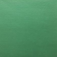 Green Decorator Fabric by Kravet