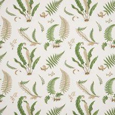Stone/Green Print Decorator Fabric by G P & J Baker