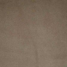 Mink Solid Decorator Fabric by Pindler