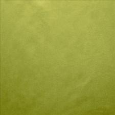Iguana Decorator Fabric by Kasmir
