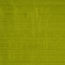Avocado Decorator Fabric by RM Coco