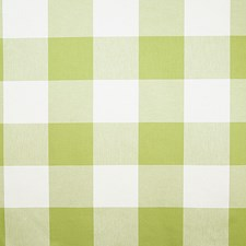 Spring Check Decorator Fabric by Pindler