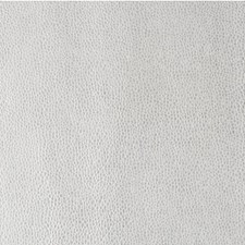 Ice Ice Baby Metallic Decorator Fabric by Kravet