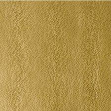 Rising Sun Metallic Decorator Fabric by Kravet
