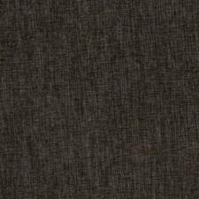Chinchilla Decorator Fabric by RM Coco