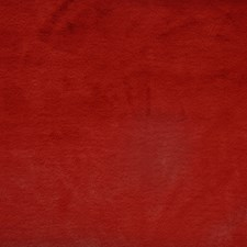 Cherry Decorator Fabric by Maxwell