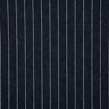 Ink Stripe Decorator Fabric by Pindler