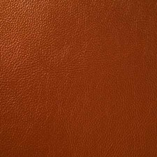 Copper Decorator Fabric by Pindler