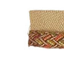 Umber Braided Lipcord Trim by RM Coco