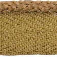 Cord With Lip Bronze Trim by Kravet
