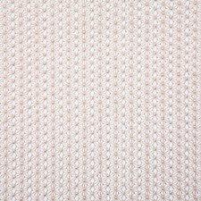 Petal Decorator Fabric by Pindler