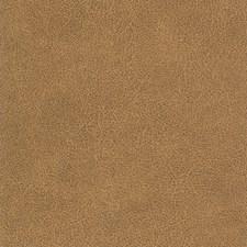 Buckskin Decorator Fabric by Silver State