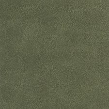 Sage Decorator Fabric by Silver State