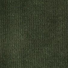 Black Olive Decorator Fabric by Scalamandre