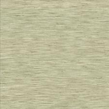 Lichen Decorator Fabric by Kasmir