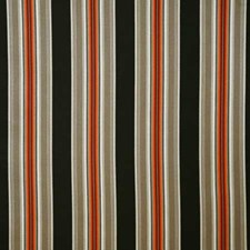 Flame Stripe Decorator Fabric by Pindler