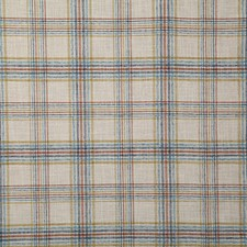 Tranquil Check Decorator Fabric by Pindler