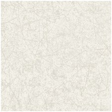 Ivory Print Wallcovering by Cole & Son Wallpaper