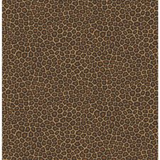 True Leopard Print Wallcovering by Cole & Son